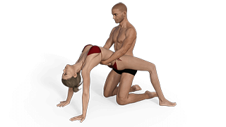 Bridged Guard Sex Position